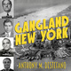 Gangland New York: The Places and Faces of Mob History - Anthony M. DeStefano