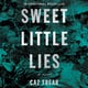 Sweet Little Lies - Caz Frear