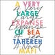 A Very Large Expanse of Sea - Tahereh Mafi