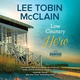 Low Country Hero - Lee Tobin McClain
