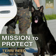 Mission to Protect - Terri Reed