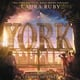 York: The Map of Stars - Laura Ruby