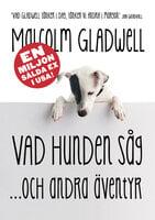 Vad hunden såg och andra äventyr - Malcolm Gladwell