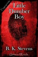 Little Dumber Boy - B.K. Stevens