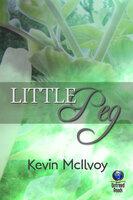 Little Peg - Kevin McIlvoy