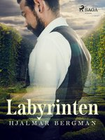 Labyrinten - Hjalmar Bergman