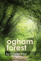 Ogham Forest - Charlie Paul