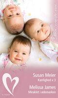 Kærlighed x 3 / Miraklet i ødemarken - Melissa James,Susan Meier