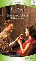 Villikkoprinssi / Rakkauden rajat - Janice Kay Johnson,Raye Morgan