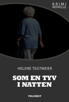 Kriminovelle - Som en tyv i natten - Helene Tegtmeier