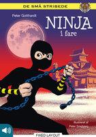 Ninja i fare - Peter Gotthardt
