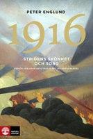 Stridens skönhet och sorg 1916 - Peter Englund