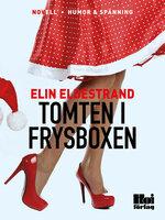Tomten i frysboxen - Elin Eldestrand