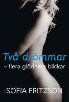 Två drömmar, flera glödheta blickar - Sofia Fritzson