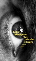 Tolv månader i skugga - Lukas Moodysson