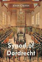 Synod of Dordrecht - John Calvin