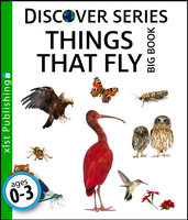 Things that Fly Big Book - Xist Publishing