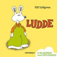 Ludde - Ulf Löfgren