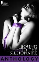 Bound to the Billionaire - Natalie Dae,Wendi Zwaduk,Sierra Cartwright