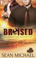 Bruised - Sean Michael
