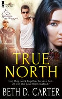 True North - Beth D. Carter