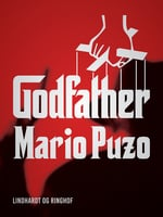 Godfather - Mario Puzo