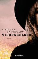 Vildfarelser - Birgitte Bartholdy