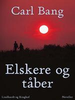 Elskere og tåber - Carl Bang