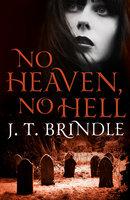 No Heaven, No Hell - J.T. Brindle