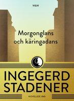Morgonglans och käringadans : Noveller - Ingegerd Stadener