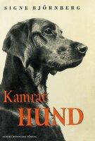 Kamrat hund - Signe Björnberg