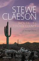 Snön faller i Cochise County - Ur resedagböckerna - Stewe Claeson