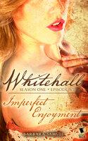 Imperfect Enjoyment - Various Authors