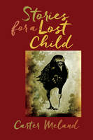 Stories for a Lost Child - Carter Meland