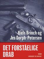 Det forståelige drab - Jes Dorph-Petersen,Niels Brinch
