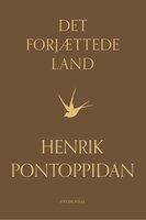 Det forjættede land, 3. del - Henrik Pontoppidan