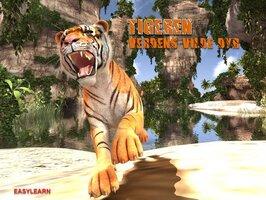 Tigeren - Steven Kinch