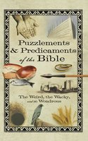Puzzlements & Predicaments of the Bible - Howard Books