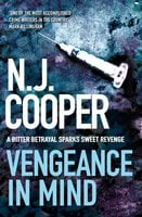 Vengeance in Mind - N.J. Cooper