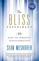 The Bliss Experiment: 28 Days to Personal Transformation - Sean Meshorer
