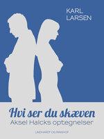 Hvi ser du skæven – Aksel Halcks optegnelser - Karl Larsen