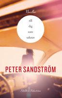 Till dig som saknas - Peter Sandström