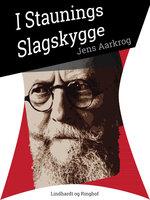 I Staunings slagskygge - Jens Aarkrog