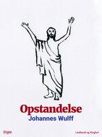 Opstandelse - Johannes Wulff