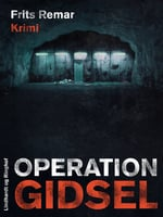 Operation Gidsel - Frits Remar