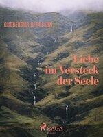 Liebe im Versteck der Seele - Gudbergur Bergsson