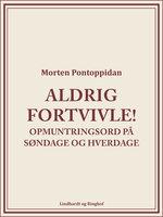 Aldrig fortvivle! - Morten Pontoppidan