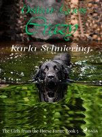 The Girls from the Horse Farm 5 - Oskar Goes Crazy - Karla Schniering