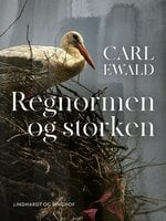 Regnormen og storken - Carl Ewald
