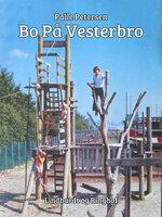 Bo på Vesterbro - Palle Petersen